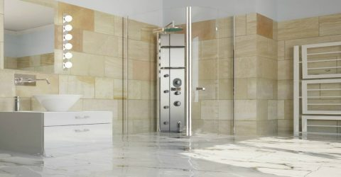 Help! My Frame Less Shower Door is Leaking!