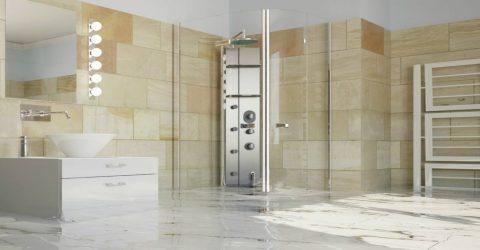 Help! My Frame Less Shower Door is Leaking!