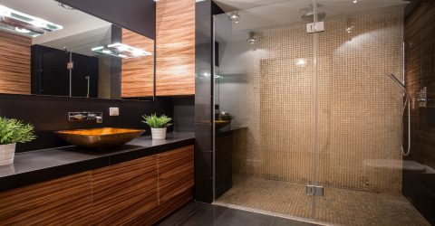 A Quick Look at the Most Popular Shower Door Replacement Options